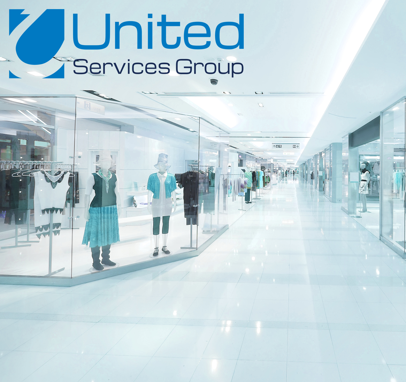 United Services Group IRIS Case Study